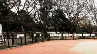 駒沢オリンピック公園 ドッグラン